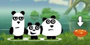 3 Pandas in Fantasy hra
