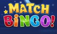 Match Bingo hra